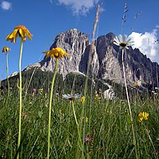 Il Gardenacia - una delle tante cime del parco naturale Puez-Odle visibili dal paese di Longiarù